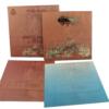 Wedding Invitation Cards | Buy Online Wedding Cards In Ahmedabad | Best Wedding Cards 82-100x100 VC-72